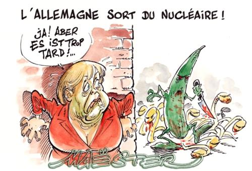 Energies : nouvelles, renouvelables, fossiles, nucléaire - Page 20 Merkelconcombre