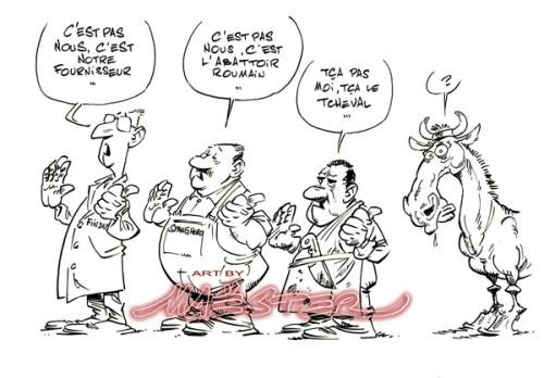 Findus-cheval001