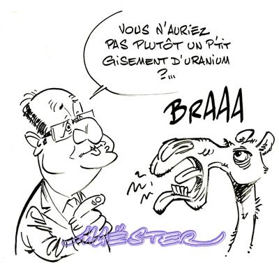 Hollande-Mali002