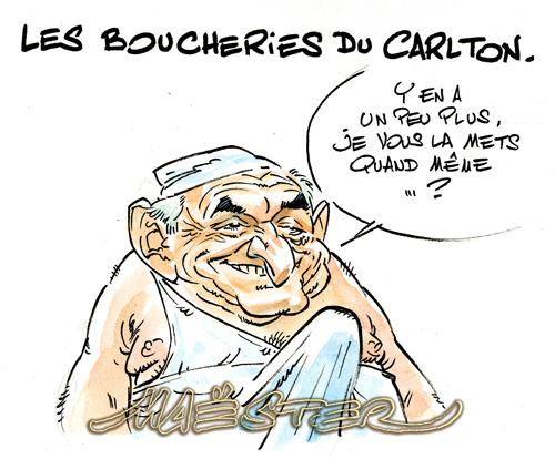 DSK-Boucher007